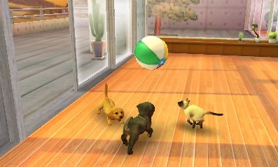 3DS Nintendogs + Cats Game
